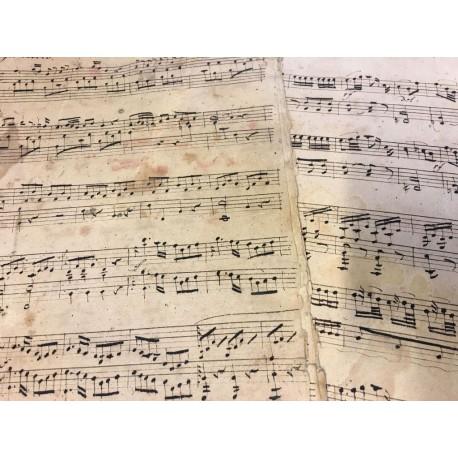 Sonata Allegro molto